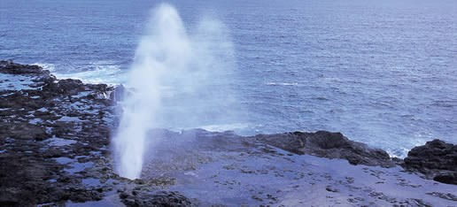 Blow Holes or Spouting Horns