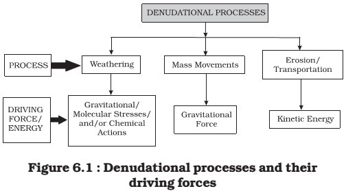 denudation processes Start studying practice exam 3 questions learn vocabulary, terms, and more with which of the following is not a denudation process a) weathering b) erosion.
