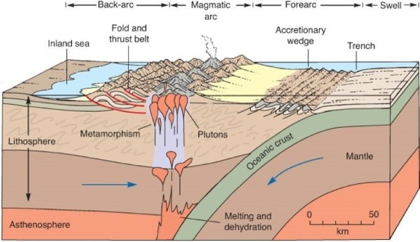 Formation of the Andes Rockies - Continent - Ocean Convergence