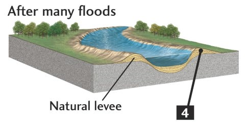 Natural Levees - flood barriers