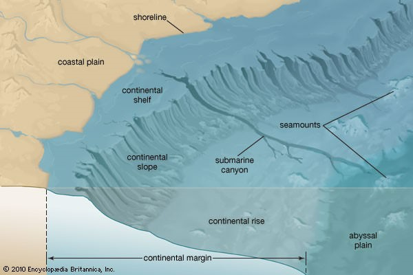 Continental shelf-slope-Rise-abyssal plain