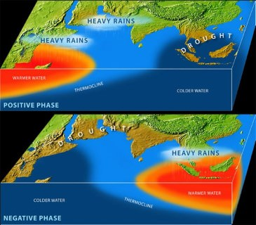 Indian Ocean Dipole effect