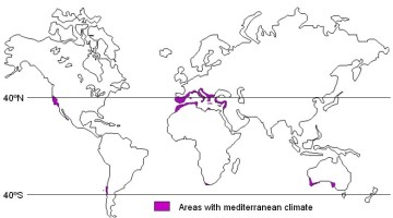 Mediterranean Climate - Western Margin Climate - West Coast Climate