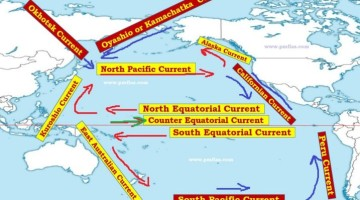 Pacific Ocean Currents – Phytoplankton