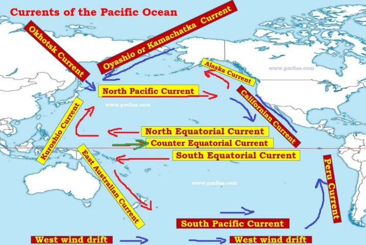 Pacific ocean currents phytoplankton and fishing pmf ias pacific ocean currents gumiabroncs Images