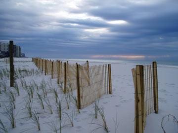 Soil Conservation - sand fences