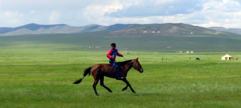 Steppe Climate -Temperate Continental - Temperate Grassland Climate
