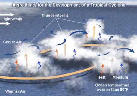Tropical Cyclones development -low level disturbances