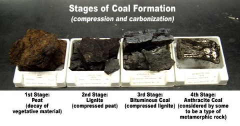 Types of coal - Peat, Lignite, Bituminous, Anthracite Coal