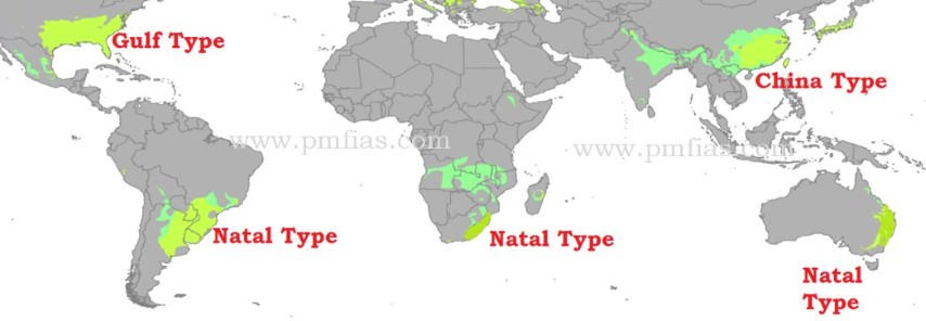 china - gulf - natal climate - Temperate Eastern Margin Climate