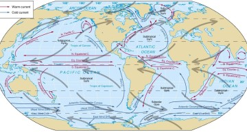 ocean currents - cold currents-warm currents