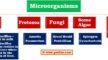 Diseases Caused by Microorganisms
