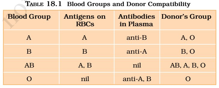 Blood Groups - ABO Grouping