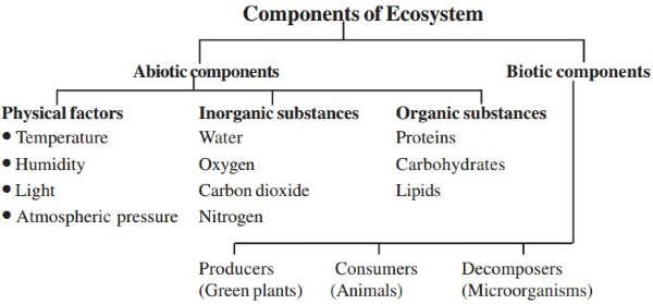 biotic and abiotic components of ecosystem