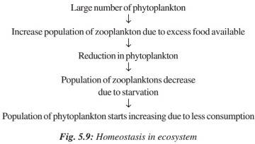 Homeostasis in Ecosystem