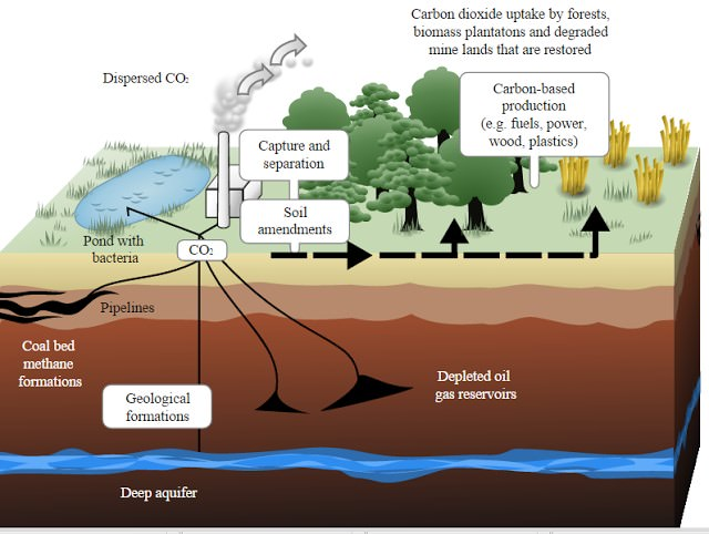 Carbon sequestration - Carbon sink - Carbon Storage