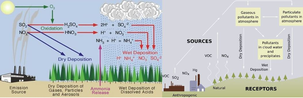 Acid Rain - Wet and Dry Deposition