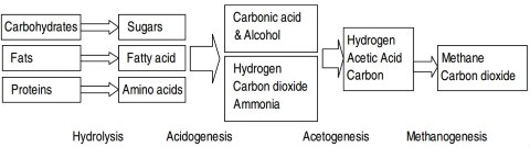 Anaerobic biodegradation