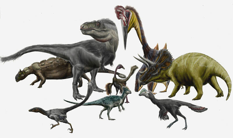 Dinosaurs and Pterosaurs