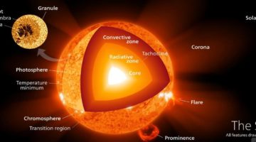 The Sun's Internal and External Structure