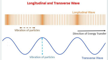 Seismic waves: The vibration of particles in Longitudinal wave and Transverse wave