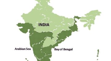 Seaweed Cultivation: Potential in India